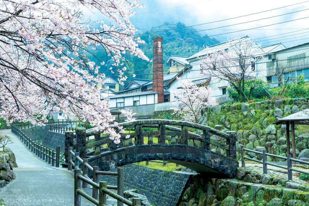 Japanese Language School Courses Vacation Study Genki Fukuoka Japan